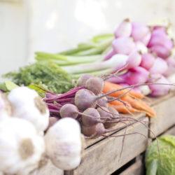 Vente directe de légumes aux particuliers