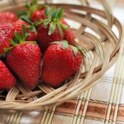 La saison des fraises est arrivée ! En vente directe chez votre maraîcher bio !