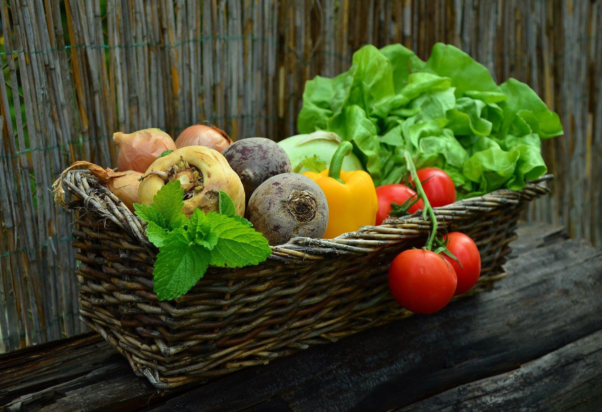 Panier de légumes bio hebdomadaires